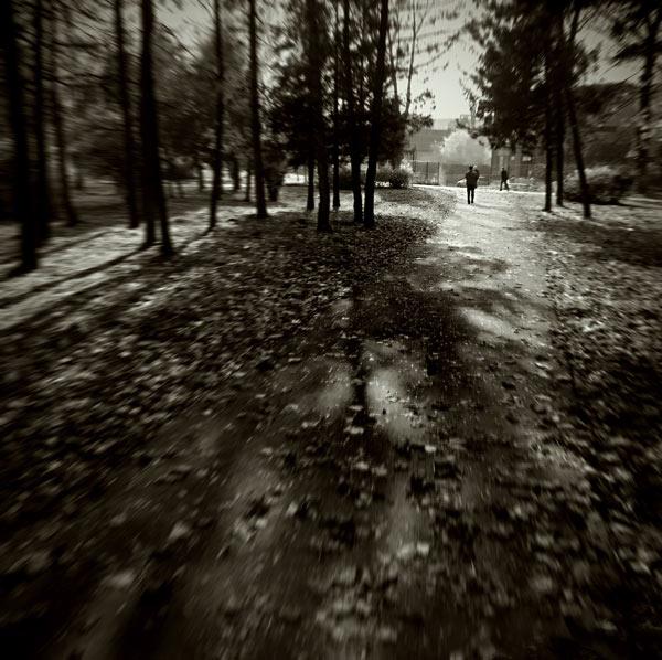 Autumnwalk